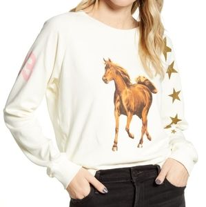 NWT WILDFOX FITS M SWEATSHIRT VINTAGE OVER…
